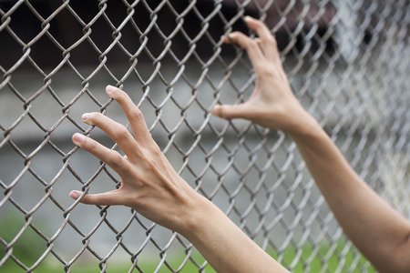 waiting convict: hand in jail