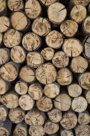 billet: fire wood, log, billet Stock Photo