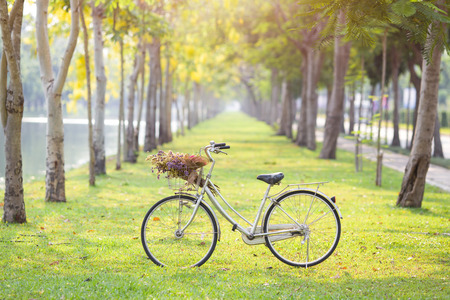park: old bicycle on green grass Stock Photo
