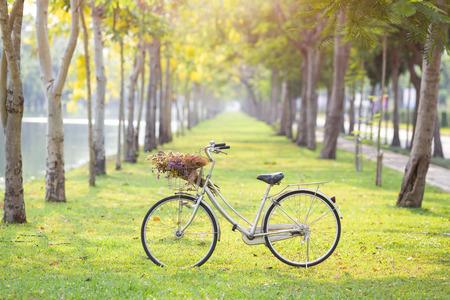bicyclette: vieille bicyclette sur l'herbe verte