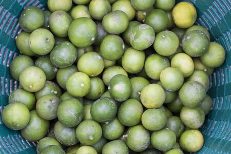 Limes in basket at the garden photo