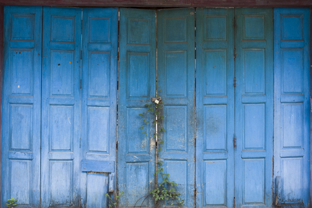 vile: Old door painted with blue paint Stock Photo