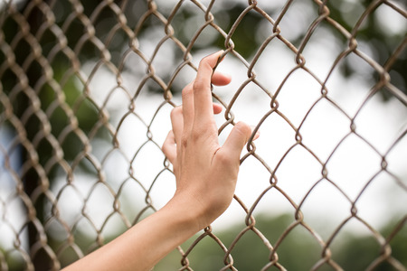 Hand holding on chain link fence photo