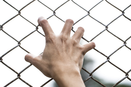 persecution: Hands holding on chain link fence