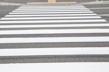 zebra: Zebra tr?fico camino a pie en la ciudad Foto de archivo