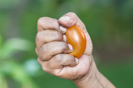 stress ball: Hands of man squeezing a stress ball Stock Photo