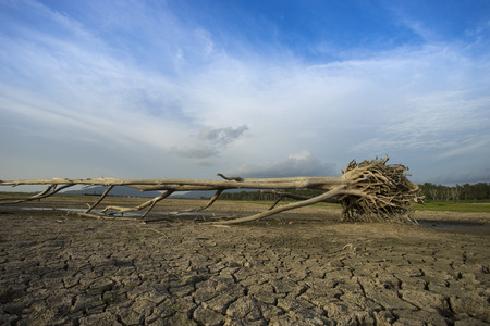 barrenness: Waste Land, in summer dry weather the dam running out of water Stock Photo