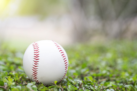 outfield: close up of baseball in the grass in the morning