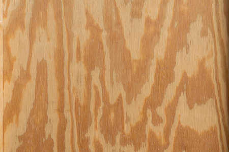 old plywood wood texture and background