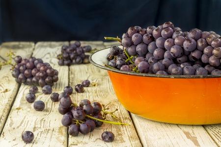 Blue frash grapes in orange metal bowl on the wooden background