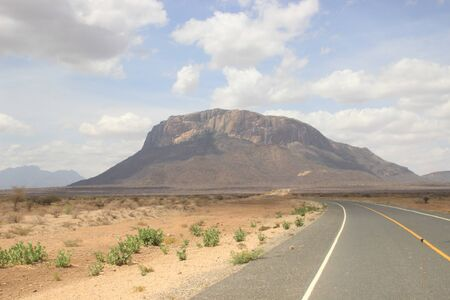 African dry hot savanna with dried plants, asphalt road and mountains in the background Banco de Imagens