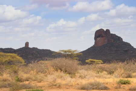 African dry hot savanna with dried plants and mountains in the background