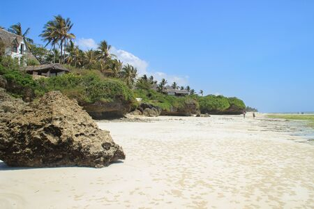 Coast of the Indian Ocean, low tide. White sand and palm trees, the beach near Mombasa, Kenya, Africa