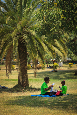 Nairobi, Kenya - January 17, 2015: a park with palm trees in the city center and a family on a picnic.