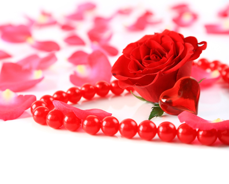 ed rose and petals with heart ans beads isolated photo