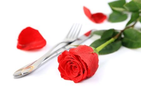 テキスト用のスペースの純粋な白い背景にナイフとフォークで設定で美しい赤いバラ