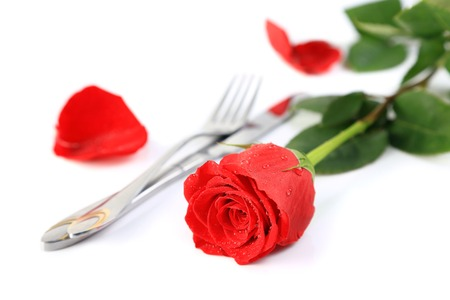 Beautiful red rose with a setting with knife and fork on a pure white background with space for text