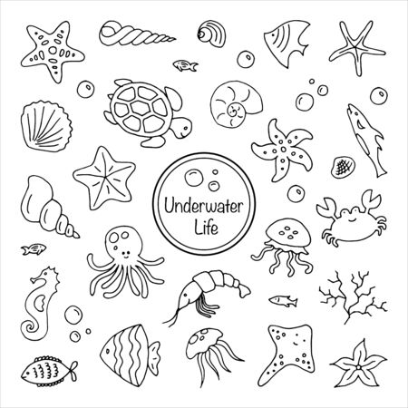 Set of sea underwater creatures outline on white background Hand drawn thin line doodle illustration Vetores