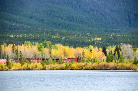 rockies: Freight Train by Vermillion Lake in Autumn, Canadian Rockies