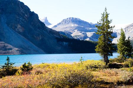 rockies: Bow Lake in Autumn, Canadian Rockies
