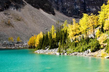 rockies: Lake Agnes in Autumn, Canadian Rockies