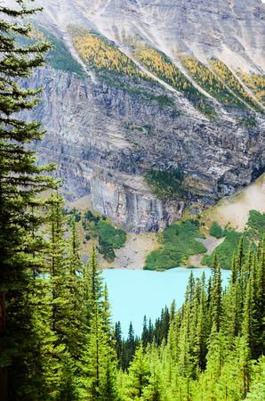rockies: Lake Louise in Autumn, Canadian Rockies