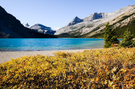 canadian rockies: Bow Lake in Autumn, Canadian Rockies