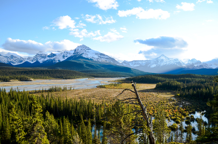 Canadian Rockies, Autumn Scenery of Icefields Parkway, Saskatchewan Crossing