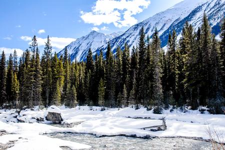 rockies: River and Mountain Range in Kootenay, Canadian Rockies