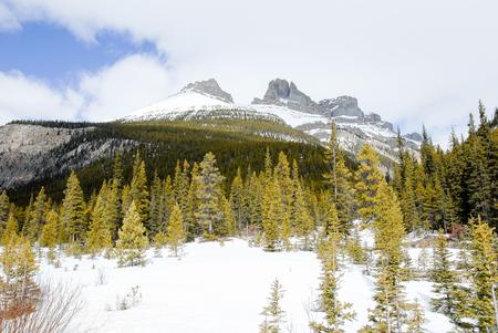 rockies: Winter Mountain Range of Canadian Rockies in Alberta, Canada