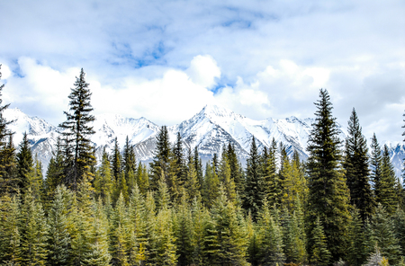 Canadian Rockies, Mountain Range in Kootenay
