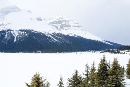 rockies: Winter Bow Lake in Banff National Park, Canadian Rockies Stock Photo