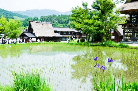 sho: 世界遺産・春の白川郷(岐阜県) Shirakawa-go in the Spring, UNESCO World Heritage Sites, Japan