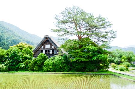 sho: 世界遺産・春の白川郷(岐阜県) Shirakawa-go in the Spring, UNESCO World Heritage Sites, Japan Editorial