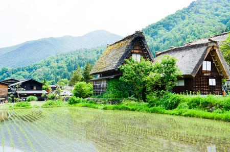 gokayama: 世界遺産・春の白川郷(岐阜県) Shirakawa-go in the Spring, UNESCO World Heritage Sites, Japan Stock Photo