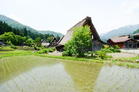 世界遺産・春の白川郷(岐阜県) Shirakawa-go in the Spring, UNESCO World Heritage Sites, Japan Stock Photo