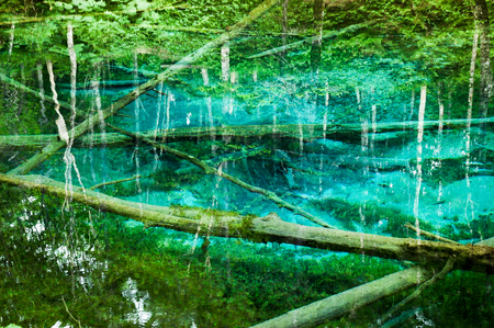 groundwater: Kaminoko-IKE, Pond Child of God, Mysterious Pond into that Underground Water Flow Out (Kiyosato Town, in Eastern Hokkaido)