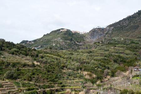 Fornacchi Village in the upper mountainside behind Corniglia-Cinque Terre (5 Terre), Five village on the Italian Riviera Liguria, Italy 写真素材