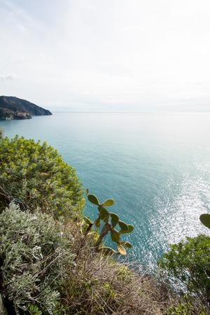 Shore of Corniglia-Cinque Terre (5 Terre), Five village on the Italian Riviera, Liguria, Italy 写真素材