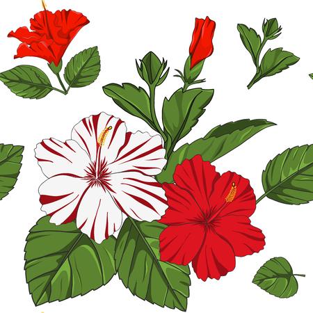 hand drawn hibiscus flower seamless pattern