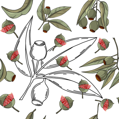 Hand drawn australia gum nut seamless pattern