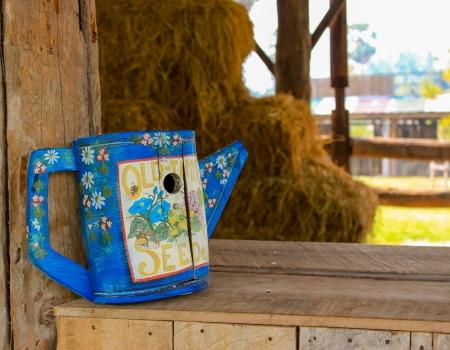 wateringcan: Blue wooden wateringcan in small farm