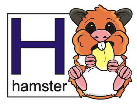 inscribed: card with the letter H inscribed hamster and hamster sits near the nut Stock Photo