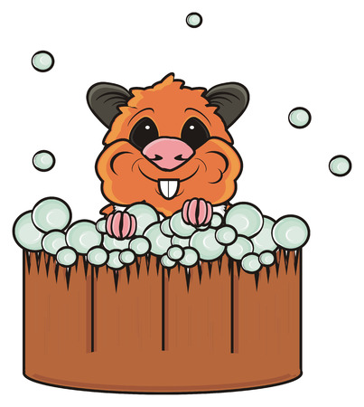 basin: Hamster sitting in a basin with soap bubbles