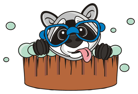 look out: raccoon wearing glasses and with his tongue hanging out looks out of a trough with soap bubbles