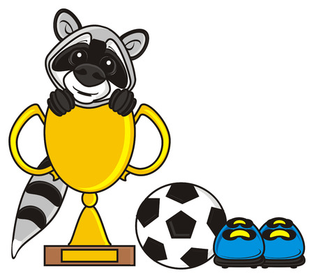 football cleats: raccoon sitting in the football cup and the next ball and cleats Stock Photo