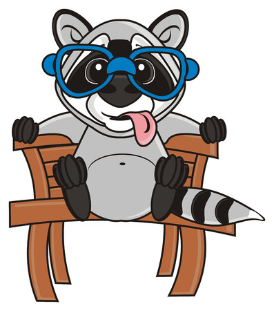 tongue out: raccoon sitting on a bench with his tongue out Stock Photo