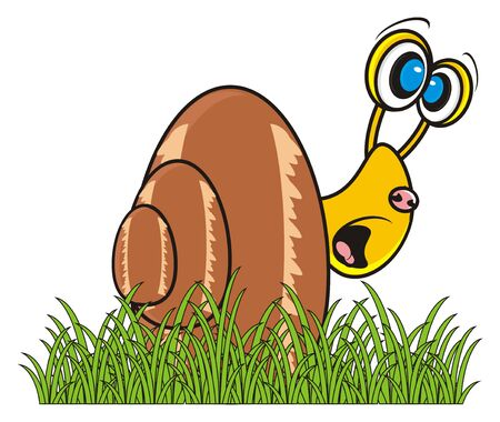 frightened snail sitting in the grass
