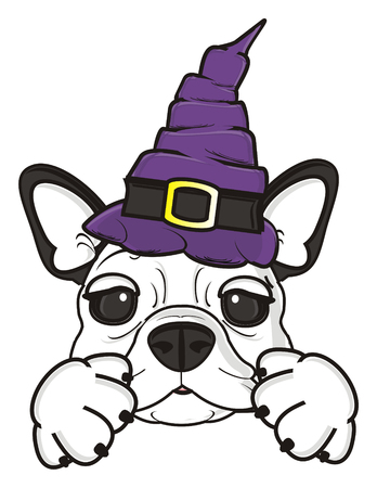 bulldog puppy: french bulldog puppy in a witches hat
