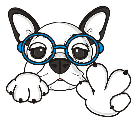 bulldog puppy: french bulldog puppy wearing glasses shows a gesture cool